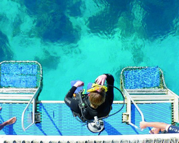 top-down shot of scuba diver standing on MV SeaEstas duckboard getting ready to take a step into the water