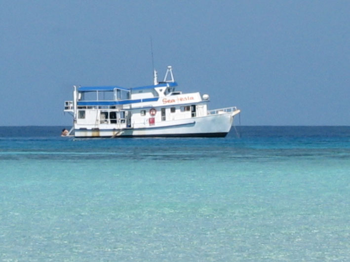 3 Day 3 Night Liveaboard Trip Townsville Scuba Dive Great barrier Reef and Yongala Wreck Sea Esta