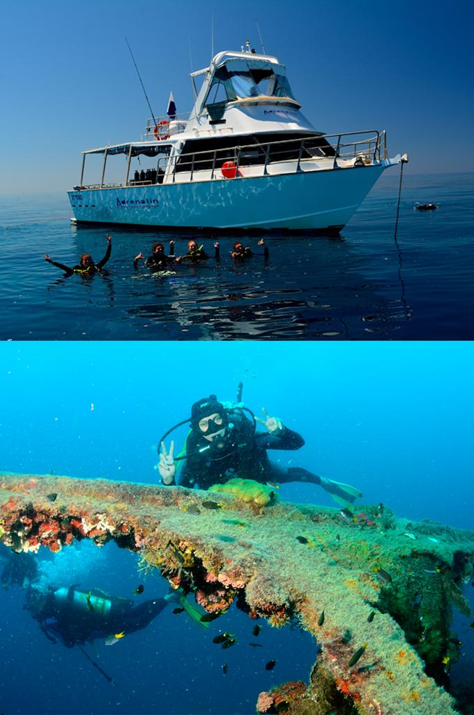 day-trip-yongala-reef