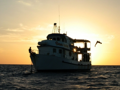 3 Day 3 Night Liveaboard Trip Townsville Scuba Dive Great barrier Reef and Yongala Wreck Sea Esta Sunset