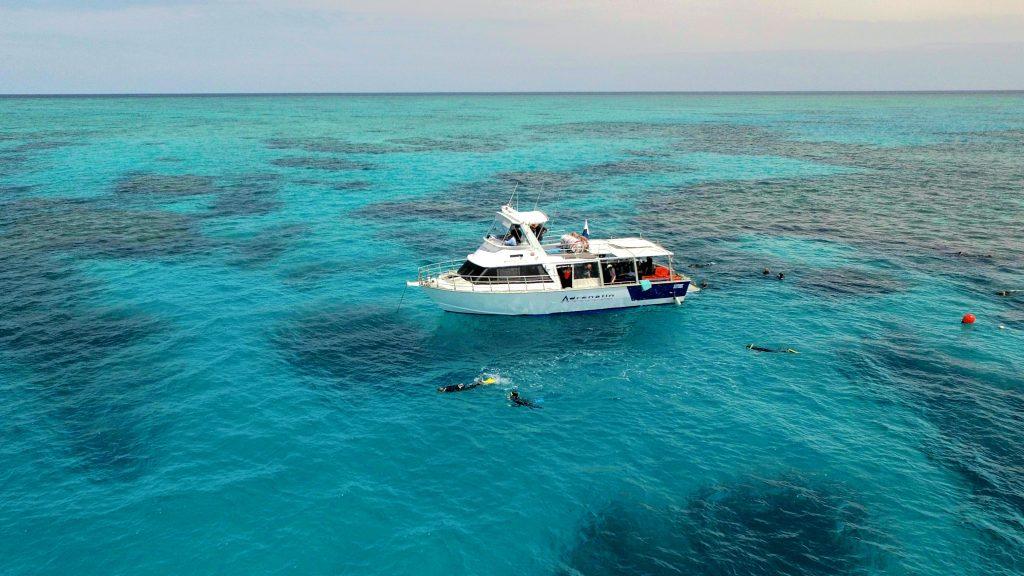 Great Barrier Reef Townsville Magnetic Island Lodestone Reef Snorkel Dive