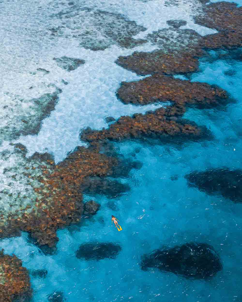 Birds-eye view of a female snorkeller in the water at Lodestone Reef