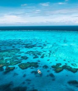 a birdseye view of mv adrenalin anchored at lodestone reef
