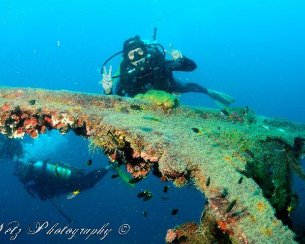 Scuba Diver at the Yongala shipwreck