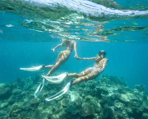 Two Snorkellers holding hands and freediving on the Great Barrier Reef