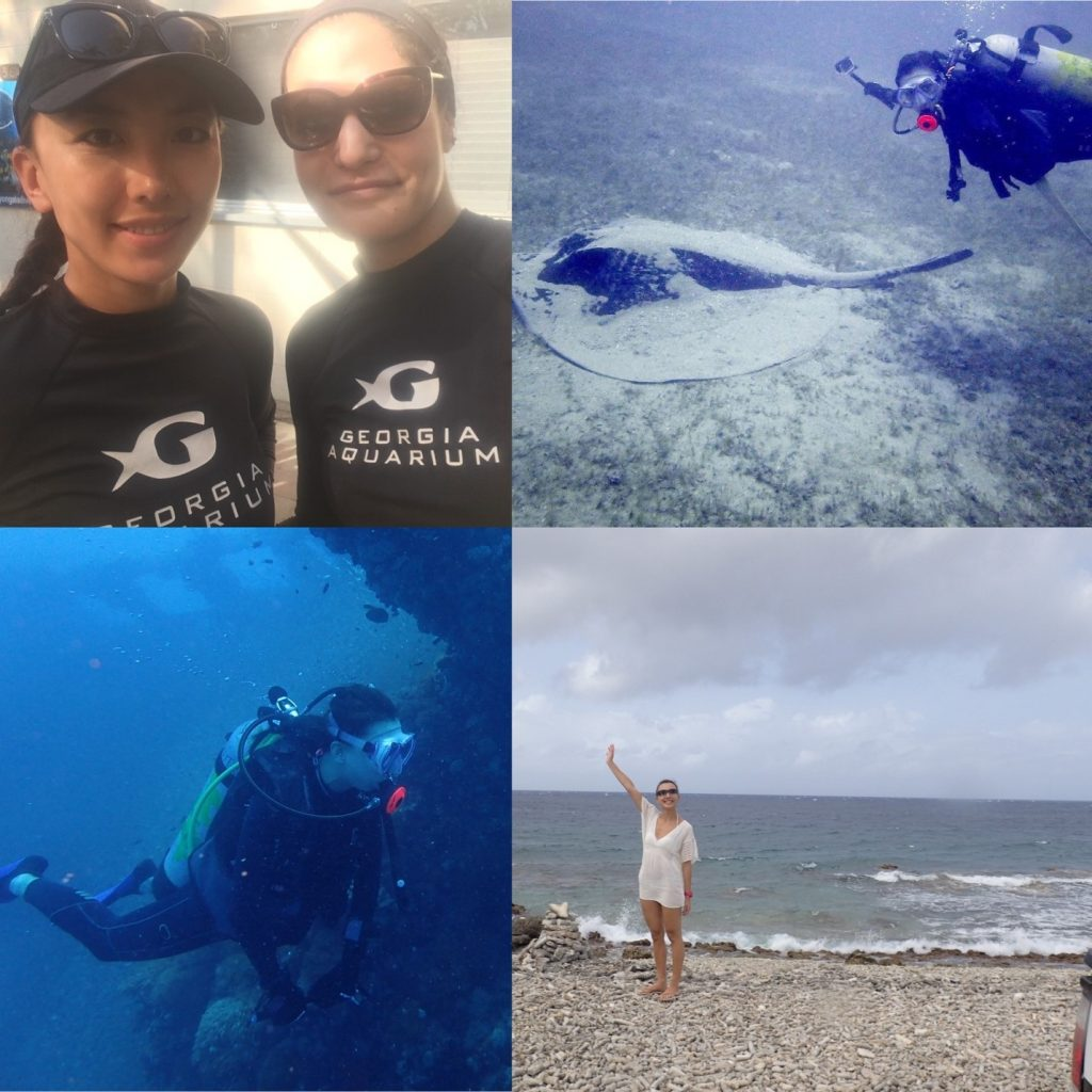 four picture montage: top left is julia and summer, top right is summer diving with a ray, bottom left is summer scuba diving and bottom right is summer standing on the beach waving