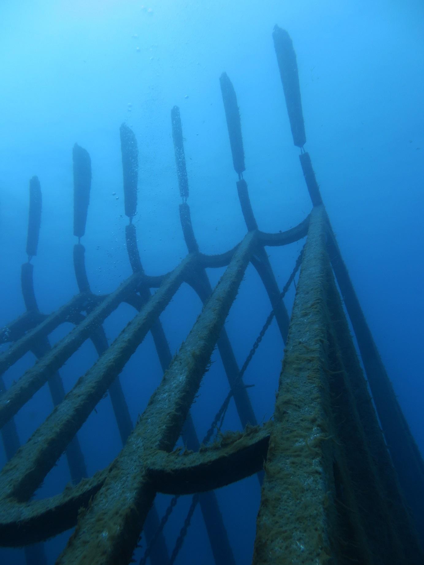 Museum of Underwater Art Townsville Adrenalin Snorkel and Dive