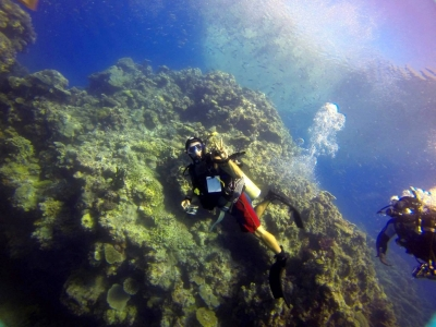 Scuba diver posing in front of a large reef structure holding up the peace sign