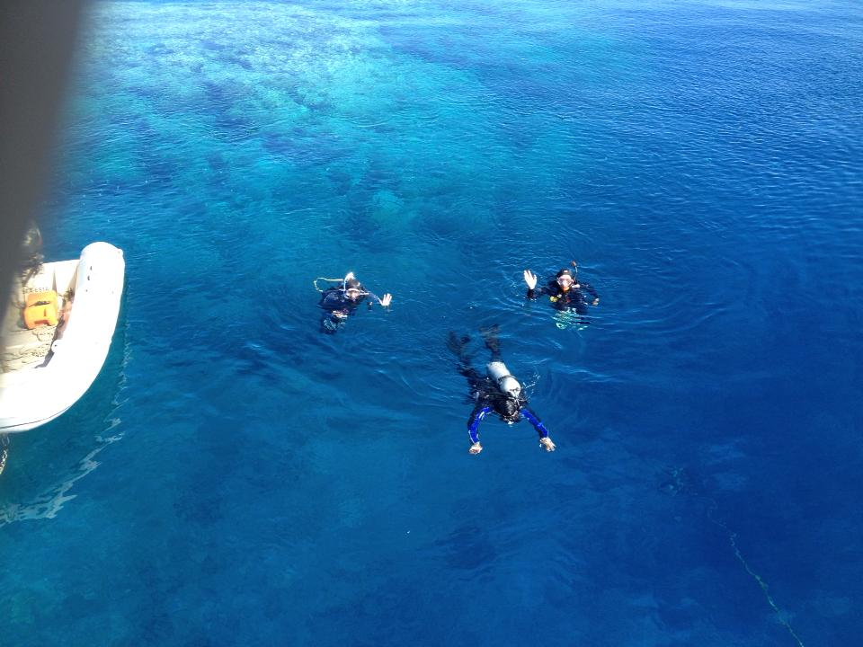 Scuba Divers getting to go underwater at Peacock Bommie