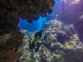 Great Barrier Reef Townsville Magnetic Island Lodestone Reef Snorkel Dive Day Trip