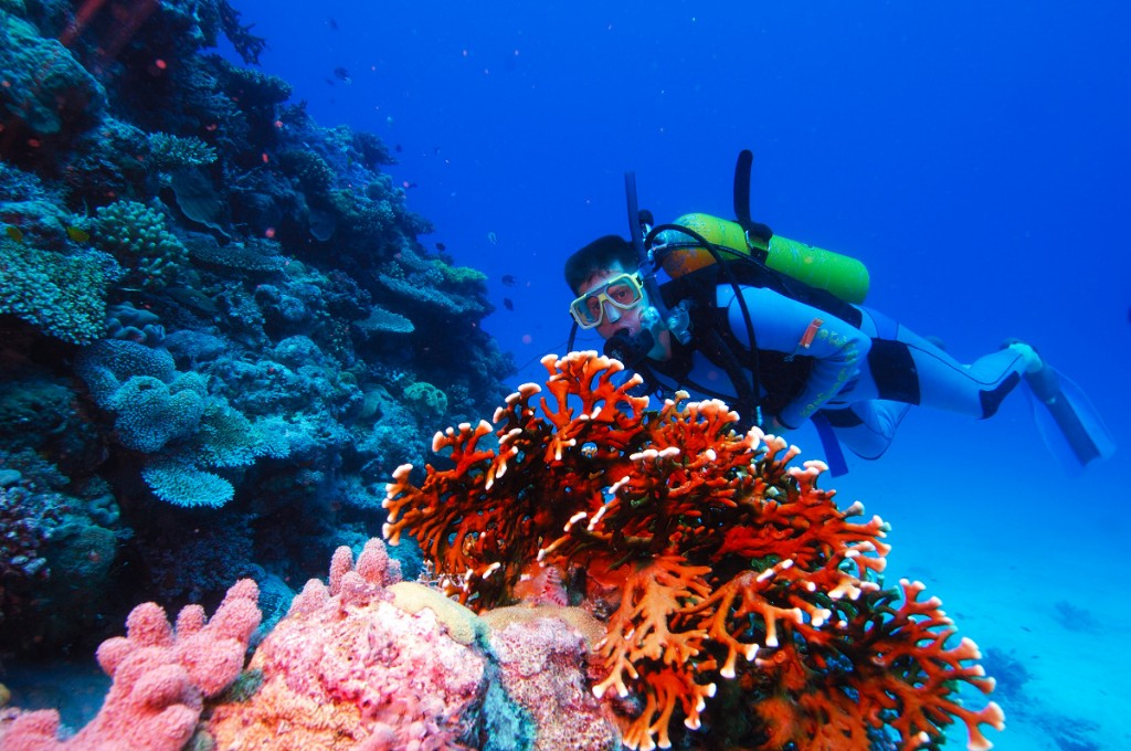 Diver at the Great Barrier Reef with Adrenalin Snorkel and Dive