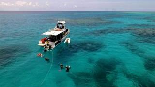 Great Barrier Reef Townsville Magnetic Island Lodestone Reef - Snorkel Dive