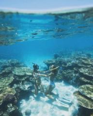 Townsville Magnetic Island Great Barrier Reef Snorkeler