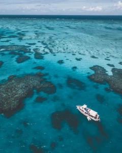 Aerial view of MV Adrenalin parked on Lodestone Reef during a Great Barrier Reef Day Trip
