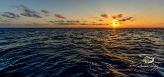 sun setting over the horizon at the great barrier reef