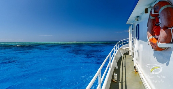 3 Day 3 Night Liveaboard Trip Townsville Scuba Dive Great barrier Reef and Yongala Wreck Wheeler Quay