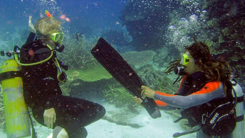 Photo of a scuba diver handing her buddy her fin underwater