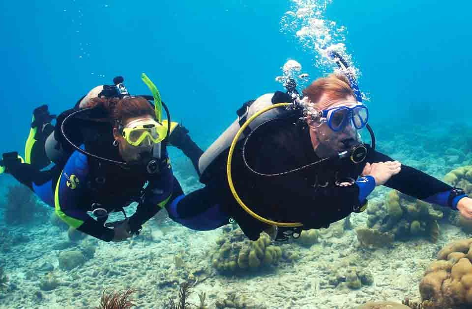 two scuba divers navigating underwater