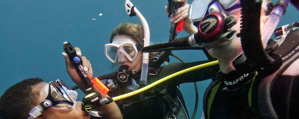 the divers sharing their octos making an ascent to the surface