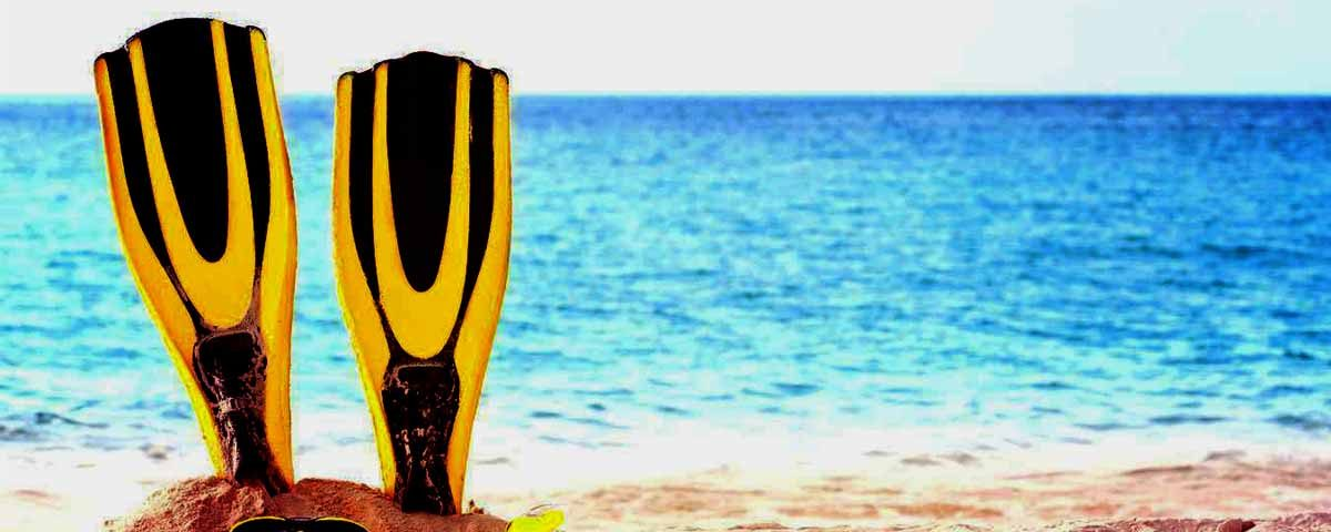 Yellow Fins in the Sand