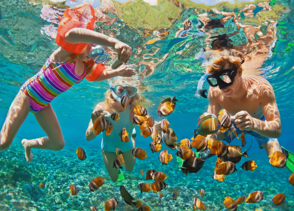 Things to do in Townsville these school holidays Family snorkeling the great barrier reef