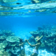 Things to do in Townsville these school holidays Two girls snorkeling the Great Barrier Reef